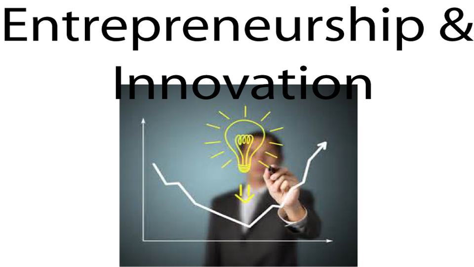 Business Lifecycle Entrepreneurship and Innovation